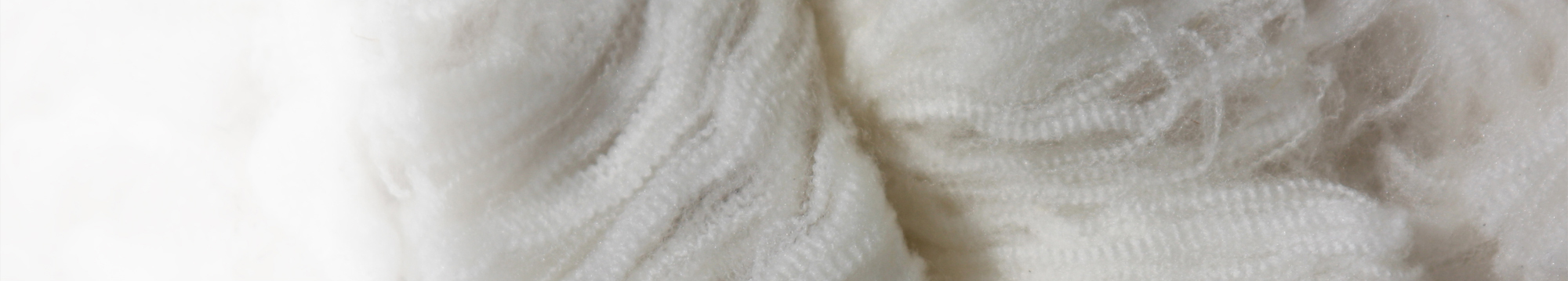 NEW-HEADER1_Wool.2000